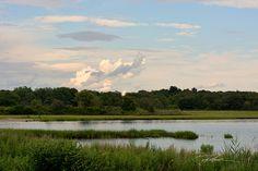 Colt State Park by david fuller    Via Flickr: Bristol RI