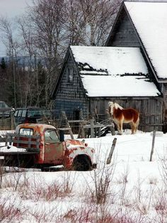 The horse barn.  I like being in the country.  There is a lot of scenery to enjoy.  This old truck has charm all its own.  Love the horse with its winter coat on! ... #Barn #Mills #Farms #Design