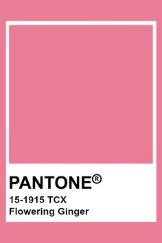 Pantone Tcx, Pantone Swatches, Color Swatches, Pantone Color Chart, Pantone Colour Palettes, Colour Pallete, Color Schemes, Pink Ginger, Color Harmony