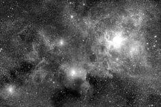 Stellar Field Nebulae - b/w - Tapetit / tapetti - Photowall