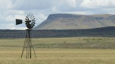 Near Steynsburg . Windmills, Wind Turbine, South Africa, Cape, Waiting, Places, Mantle, Cabo, Wind Mills