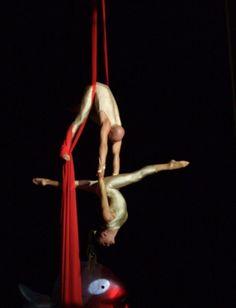 Duo tissus aérien Modern Dance Photography, Arial Silks, Circus Aesthetic, Air Yoga, Acro Dance, Dance Studio, Stretching, Bodies, Hoop