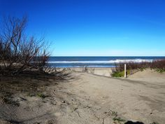 pinamar Costa, Beach, Water, Travel, Outdoor, Buenos Aires Argentina, Buenos Aires, Nightlife, Falling In Love