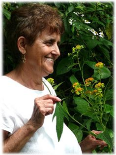 Sacred Plant Traditions Upcoming Events - – ROSITA ARVIGO: Homage to Ix Chel, Our Own American Goddess Sacred Plant, Upcoming Events, Belize, Natural Health, Maya, Health And Wellness, Therapy, Healing, American