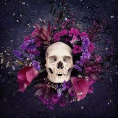 Screaming Skull, Skulls, Flora, Halloween Face Makeup, Photo And Video, Awesome, Beautiful, Instagram, Plants