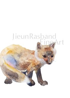 baby Fox instant print printable art animal by JieunRasbandFineArt