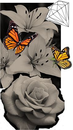 Lilly Flower, Tattoo You, Amazing Art, Tattoo Ideas, Lily, Butterfly, Fantasy, Tattoos, Drawings