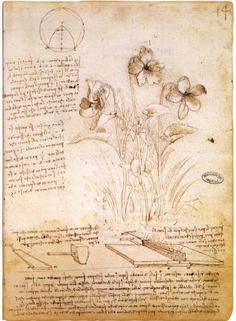 Leonardo da Vinci, 1490.