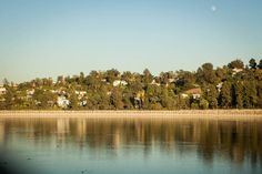 View tips about Silver Lake from local hosts. Silver Lake Los Angeles, Cult Following, Los Angeles California, West Lake, West Coast, Places To Travel, The Neighbourhood, River, Vacation