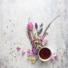"""Good morning! Tea, flowers, and sunshine - a lovely start of the day don't you think?☕️ ☀️Have a wonderful Thursday xx #CCseasonal"""