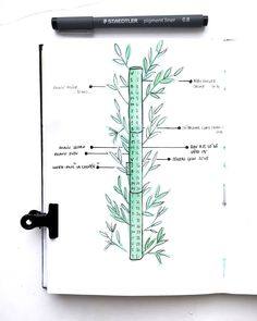 Bullet journal monthly log, bamboo drawing. | @french_dreamer_life_lover