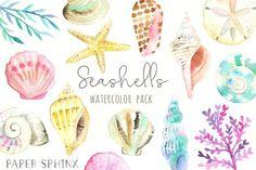 Ocean Seashells Watercolor Pack by PaperSphinx on @creativemarket