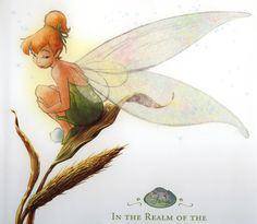 Did I mention I love fairies? Tinkerbell is my favorite.