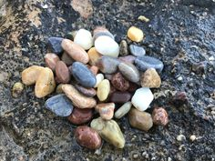 Colorful Genuine Sea Pebbles (50pcs) from Greek beaches, Small Multicolor Beach Stones, Small Colorful Sea Pebbles for Crafts, Tiny Pebbles Hag Stones, Aquarium Decorations, Beach Stones, Beach Crafts, Island Beach, Greek Islands, Red Color, Beaches, Colorful