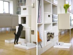 This is really cool, looks like organization boxes but it's cat furniture with a modern look, cool.