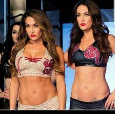 We are the best at What we do Brie Bella, Nikki Bella, Wwe 2, Nxt Divas, Superstar, Cool Girl, Bikinis, Swimwear, Eye Candy