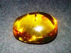 Amber Gemstone 5.52 Carat | AstroKapoor.com