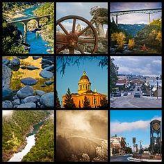 Photograph - Auburn Collage by Sherri Meyer