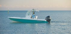 Everglades 243cc - luxury family fishing in a 24-foot center console. great color