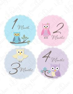 Monthly Onesie Stickers  Lily  Sweet and by LittleBabyBumblebee, $9.00