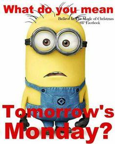 Universal® Official Licensed Despicable Me Minions Children's Unisex Bags. Amor Minions, Minions Despicable Me, Minions Quotes, Funny Minion, Minion Talk, Funny Jokes, Minion Banana, Disney Wallpaper, Cartoon Wallpaper
