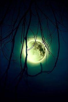 The Moon.really love the moon glow immediately surrounding it! Moon Moon, Sun Moon Stars, Blue Moon, Green Moon, Dark Moon, Stars Night, Good Night Moon, Moon Shadow, Moon Beauty