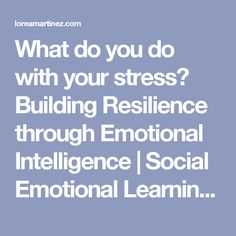 What do you do with your stress? Building Resilience through Emotional Intelligence | Social Emotional Learning and the Common Core