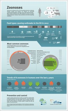 Infographic: Zoonoses by EFSA and ECDC
