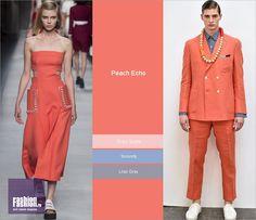 Модные оттенки весны-лета 2016: Peach Echo