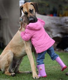 Man's Best Friend Caring For His Daughter