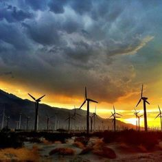 Palm Springs wind mills- my home!
