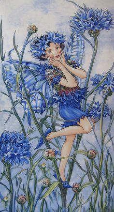 Blåklint - Cornflower Cicely Mary Barker                                                                                                                                                      More                                                                                                                                                      More