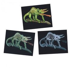 Looking for a great light table resource to stimulate curiosity? Early Learning, Light Table, Curiosity, Kids Rugs, Animals, Animales, Lightbox, Kid Friendly Rugs, Animaux