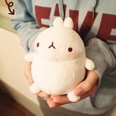 Molang 4 Bunny Rabbit Plush w Suctioncup in K Drama Cute Soft Toy Doll | eBay