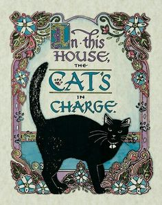 The cat's in charge - cat art Crazy Cat Lady, Crazy Cats, I Love Cats, Cool Cats, Cat Embroidery, Black Cat Art, Black Cats, Photo Chat, Cat Posters