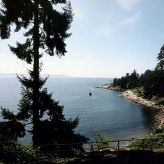 Caulfeild Park, West Vancouver: see you soon, beautiful place.