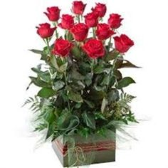 Picture of 12 Red Long Stem Roses with Greenery