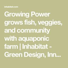 Growing Power grows fish, veggies, and community with aquaponic farm | Inhabitat - Green Design, Innovation, Architecture, Green Building