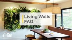 Get the scoop on what goes into creating a living wall in your home and some of the leading manufacturers of this hot new product category