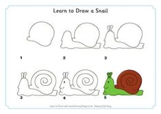 Learn to Draw a Snail
