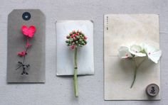 flowers- images by Sania Pell