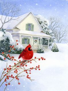 Lisa Alderson - LA - cardinal snow scene.jpg