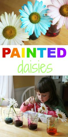 Painted Daisies Science Experiment for Kids - I remember doing this is a kid myself with Frangipani. Nothing so flash as multi colors - just sat the flowers in our ink wells at school. Yes I'm that old LOL!