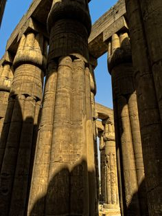 https://flic.kr/p/7FHUDJ   Luxor Temple   Lotiform (lotus-shaped) columns in the Sun Court of Amenhotep III (1388-1348 BC)