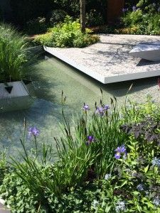 Chelsea Flower Show - Hugo Bugg's RBC Waterscape show garden