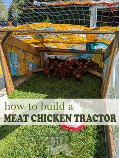 DIY Meat Chicken Tractor with Plans - Learn how and WHY you should build a chicken tractor for your poultry! These are SUCH a fantastic way to keep your birds happy and healthy. Backyard Chicken Coops, Diy Chicken Coop, Chickens Backyard, Clean Chicken, Chicken Runs, Meat Chickens, Raising Chickens, Chicken Feeders, Healty Dinner