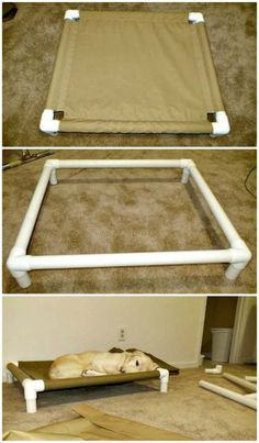 How To Build A PVC Dog Bed Tutorial - 9 DIY Dog Bed Ideas Using PVC Pipe - DIY & Crafts funny and vine compilation funny, and pets r family toothache. Pvc Dog Bed, Dog Bed Frame, Dog Hammock, Wood Dog Bed, Dog Rooms, Dog Crafts, Diy Bed, Pet Beds, Dog Houses