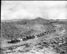 A long stagecoach traveling down an unpaved dirt road towards the mines, Goldfield, Nevada, ca.1905. http://digitallibrary.usc.edu/cdm/ref/collection/p15799coll65/id/17353