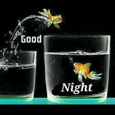 New funny good morning messages sweet dreams ideas Good Night Friends, Good Night Wishes, Good Night Moon, Good Night Quotes, Good Morning Good Night, Night Gif, Funny Good Morning Messages, Happy Morning Quotes, Night Messages