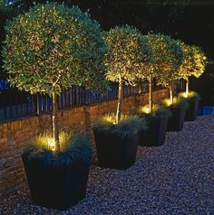 This round up is full of creative outdoor lighting ideas to light up the garden at night. Try these outdoor lighting ideas when you want to illuminate a setting and create a distinctive mood. outdoor lighting ideas backyards, outdoor lighting ideas diy, outdoor lighting ideas house, outdoor lighting ideas patio, outdoor lighting ideas front yards #patiolightingideas